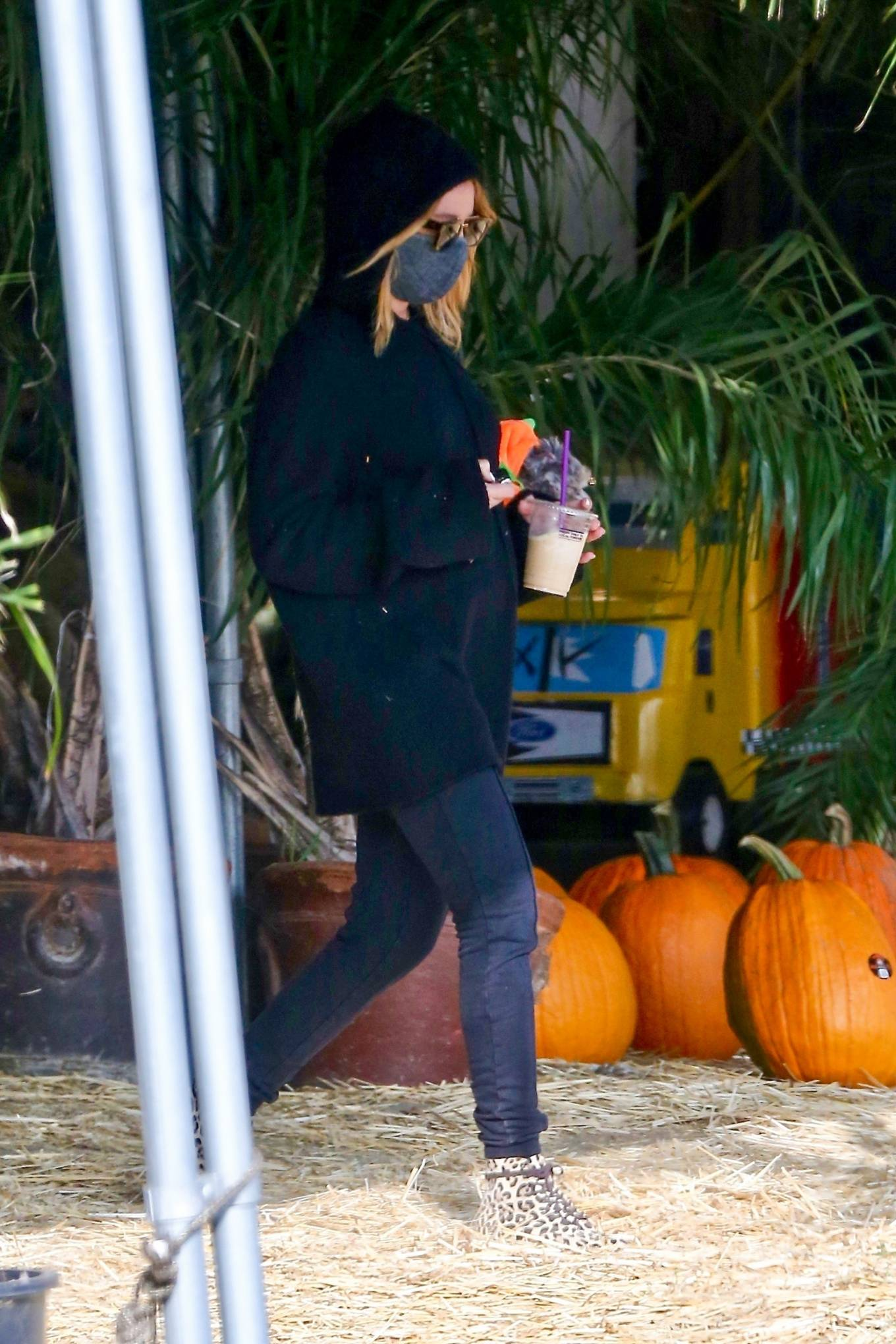 Ashley Tisdale 2020 : Ashley Tisdale – goes to a pumpkin in Los Angeles-06