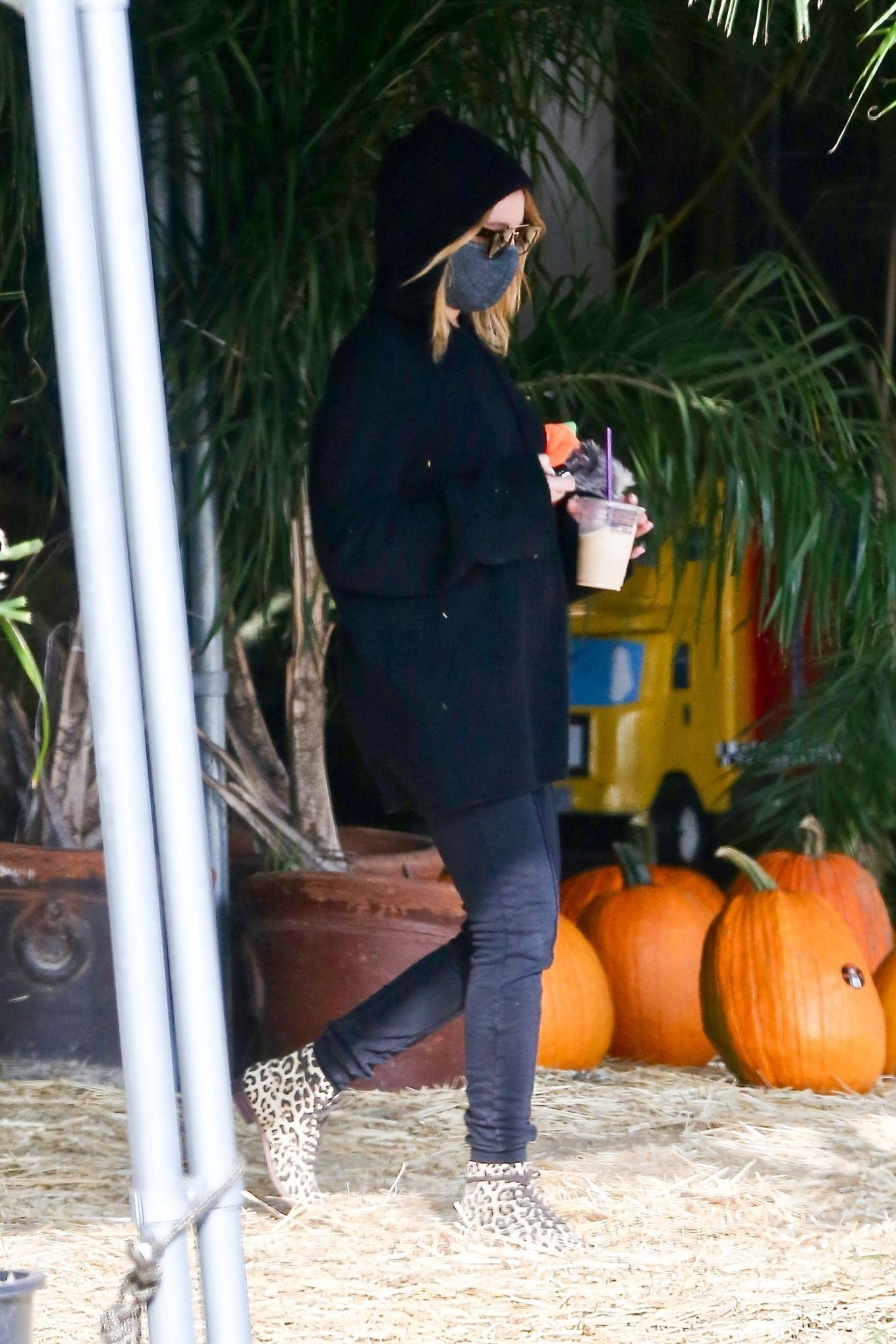 Ashley Tisdale 2020 : Ashley Tisdale – goes to a pumpkin in Los Angeles-08