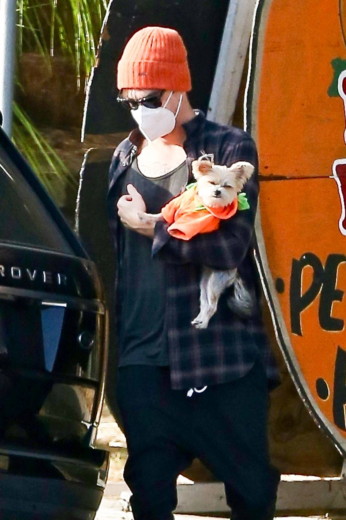 Ashley Tisdale 2020 : Ashley Tisdale – goes to a pumpkin in Los Angeles-12