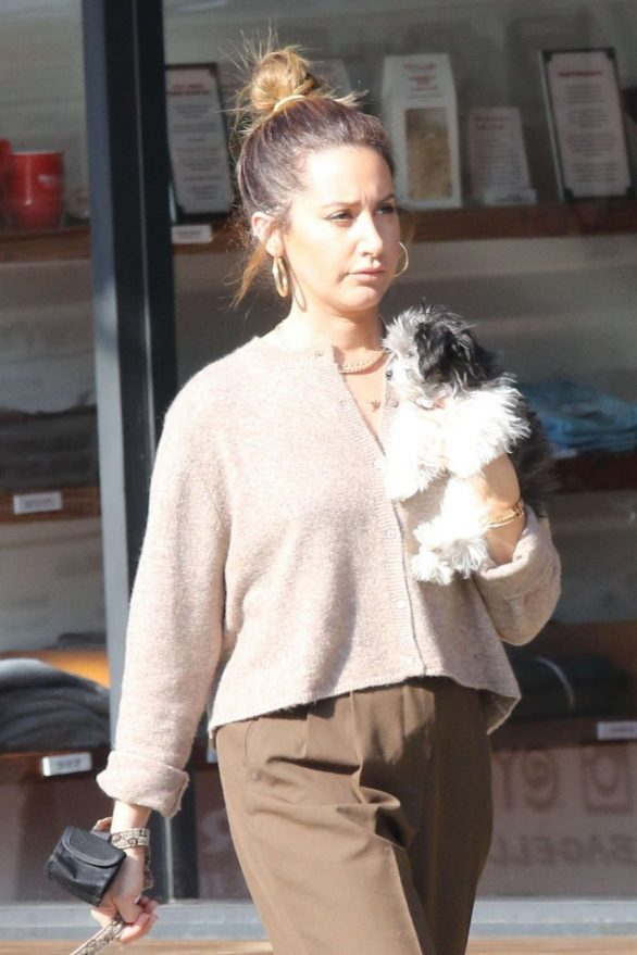 Ashley Tisdale - Out and about in Studio City