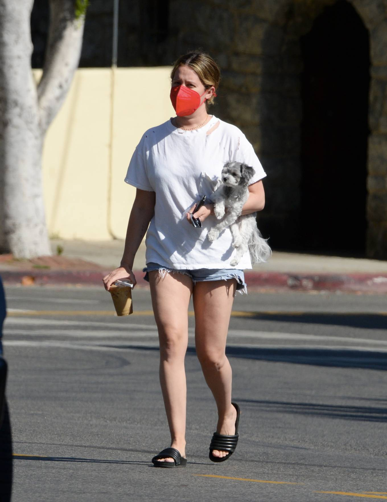 Ashley Tisdale 2021 : Ashley Tisdale – Out in Los Angeles with her little pooch-19