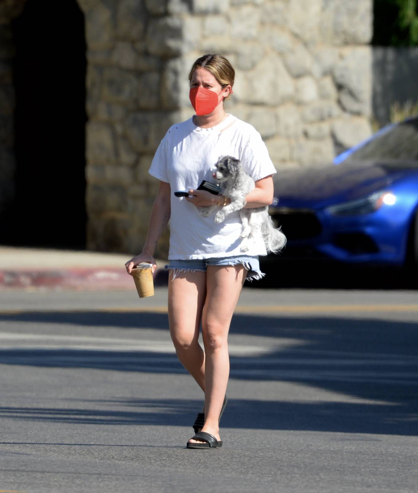 Ashley Tisdale 2021 : Ashley Tisdale – Out in Los Angeles with her little pooch-26