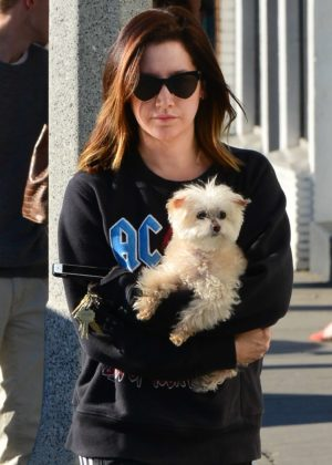 Ashley Tisdale - Out with her dog in Venice Beach