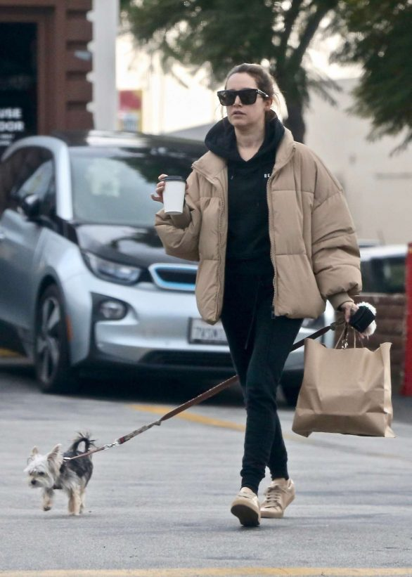 Ashley Tisdale - Takes her pup Ziggy to pick up food to go in Los Feliz