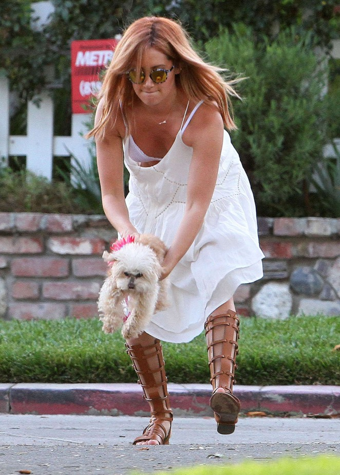 Ashley Tisdale - Walking her dog in Beverly Hills