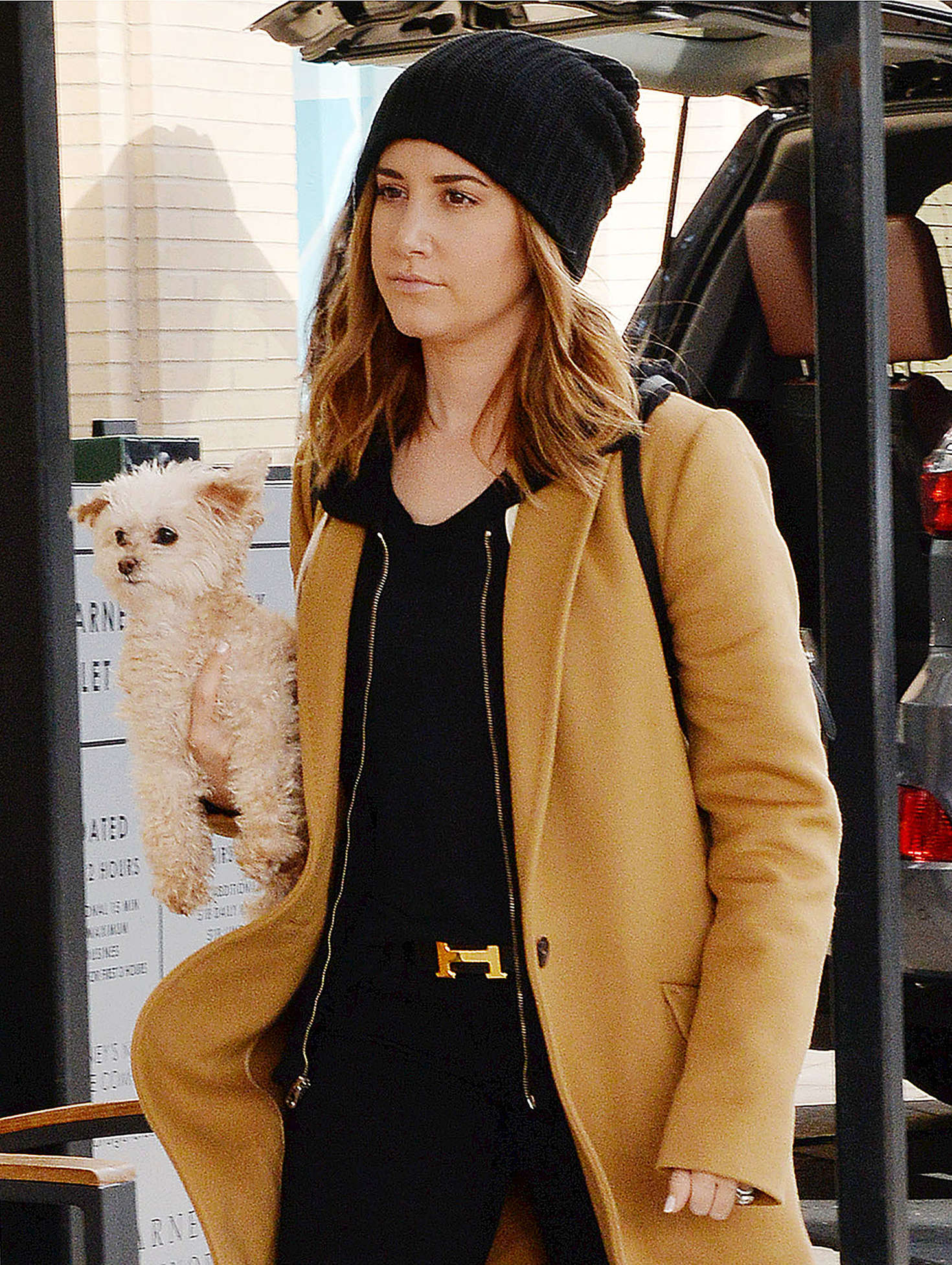 Ashley Tisdale with her puppy out in Los Angeles