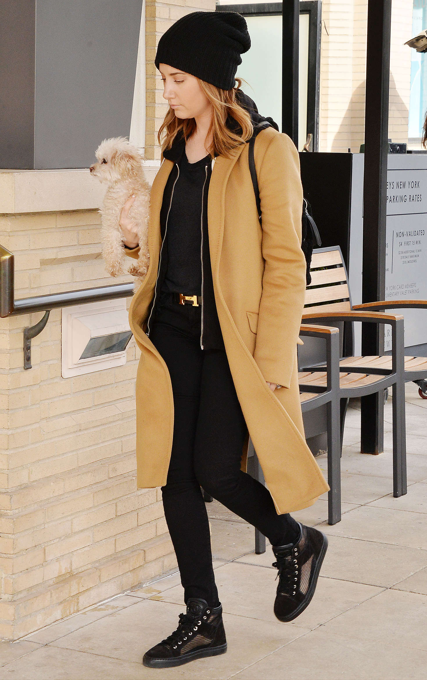 Ashley Tisdale 2015 : Ashley Tisdale with her puppy -15