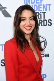 Aubrey Plaza - 2020 Film Independent Spirit Awards in Santa Monica