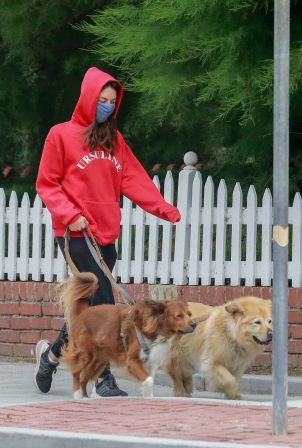 Aubrey Plaza - Dons red hoodie while out walking her dogs in Los Feliz