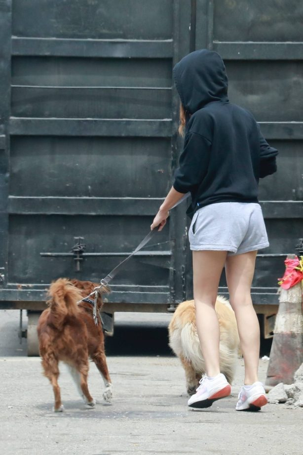 Aubrey Plaza - In shorts out for a stroll with her two dogs in Los Feliz