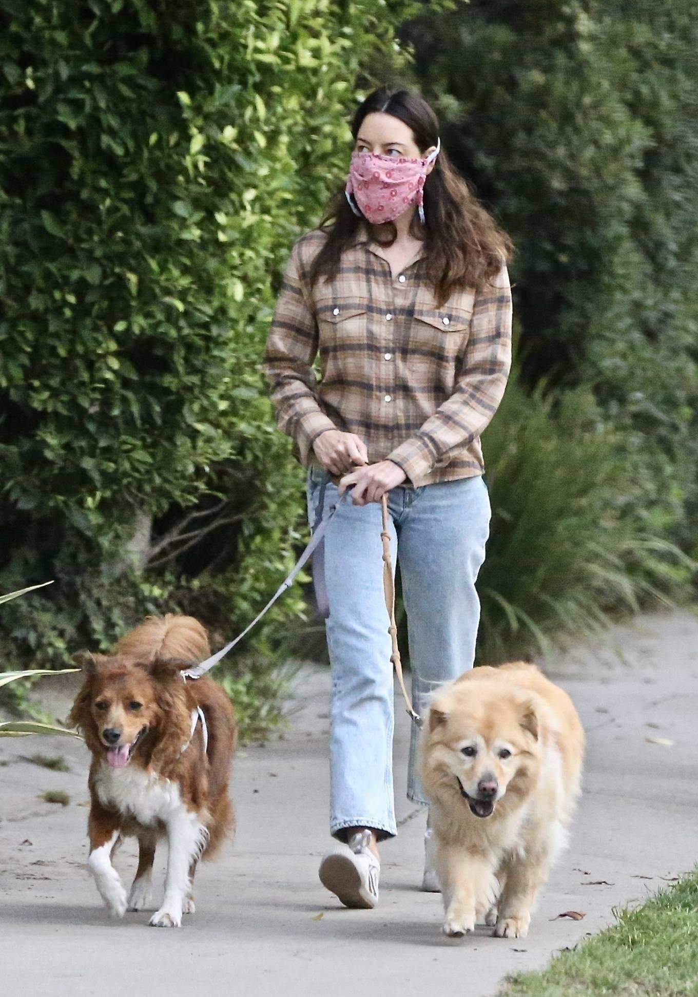 Aubrey Plaza - Out for a walk in Los Feliz