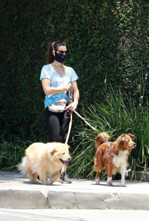 Aubrey Plaza - Out walking her dogs in LA