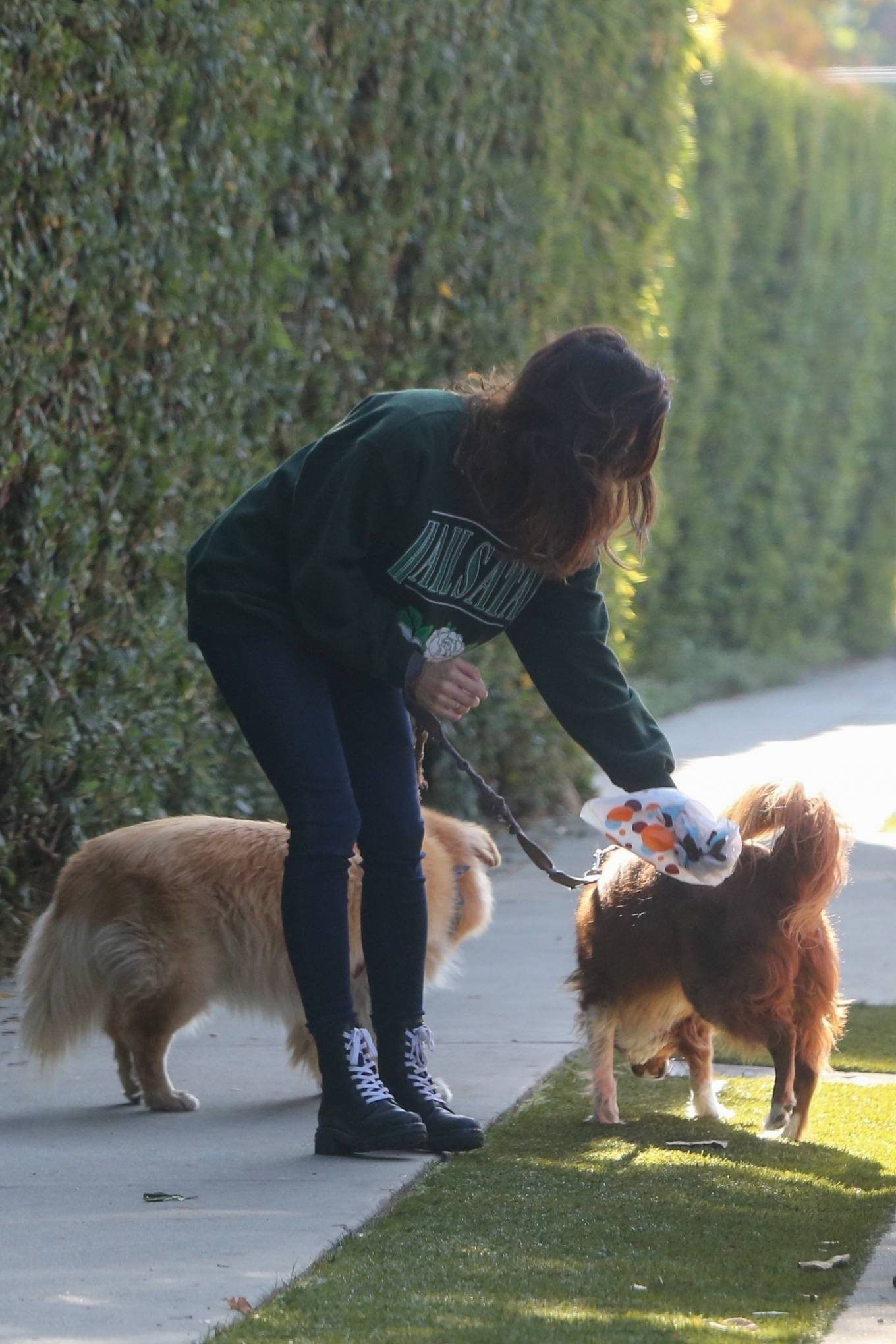 Aubrey Plaza - Out with her dogs in Los Angeles