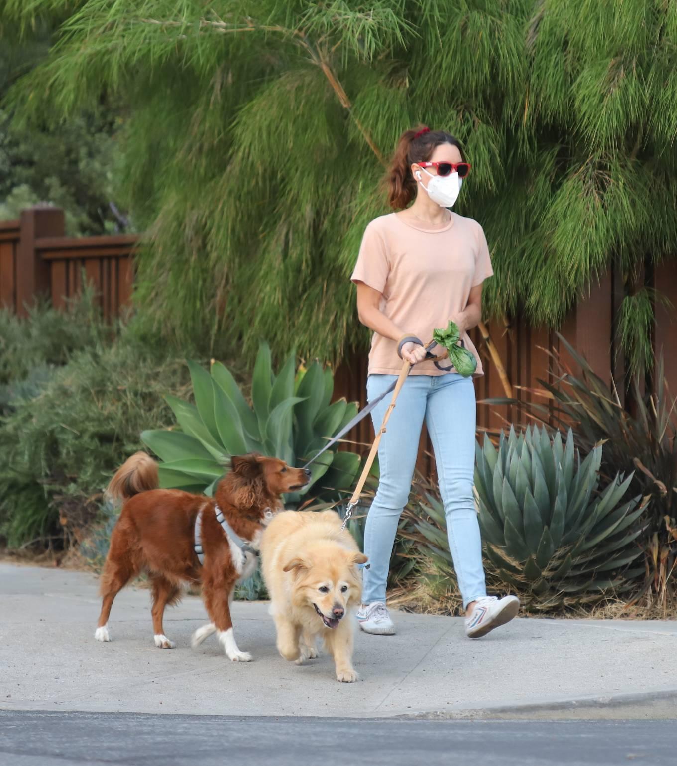 Aubrey Plaza - Seen walking her dogs in Los Angeles