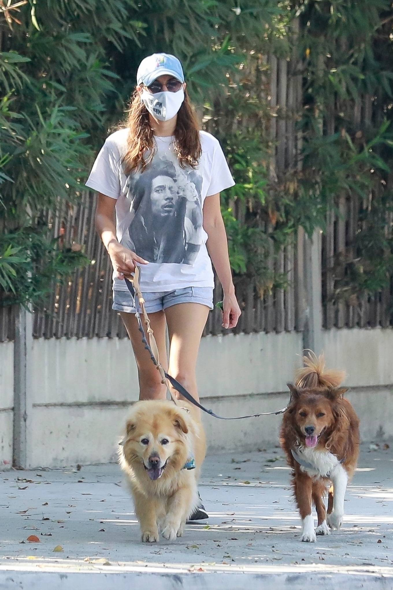 Aubrey Plaza - seen walking her dogs in Los Feliz