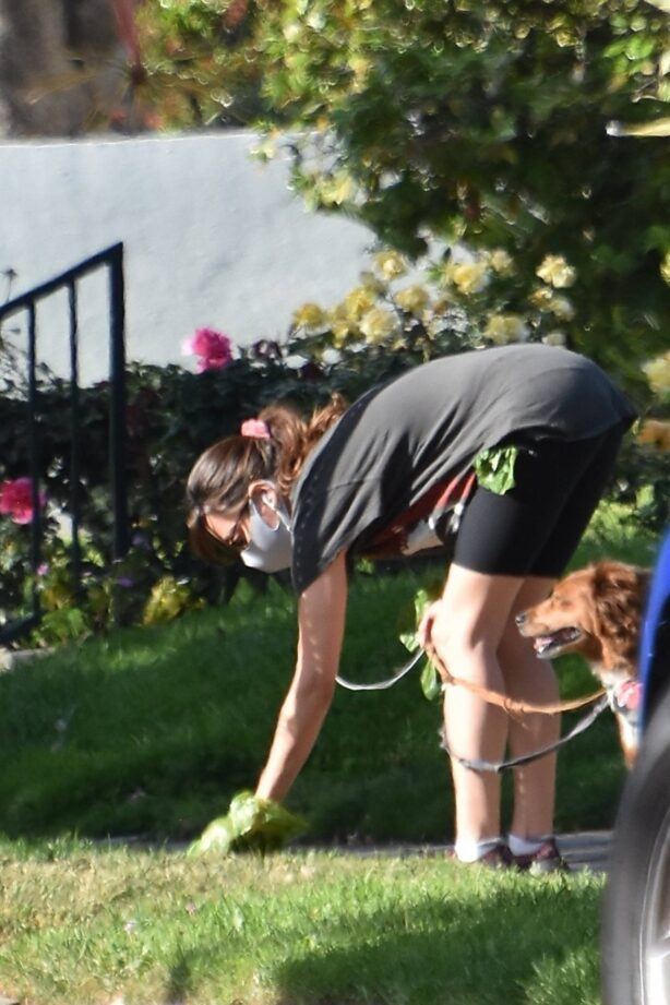 Aubrey Plaza - Takes her dogs for a walk in Los Feliz