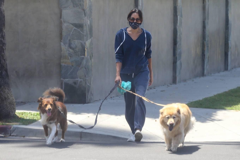 Aubrey Plaza 2020 : Aubrey Plaza – Walking her dogs in Los Feliz-07