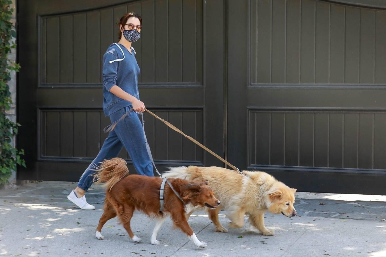 Aubrey Plaza 2020 : Aubrey Plaza – Walking her dogs in Los Feliz-08