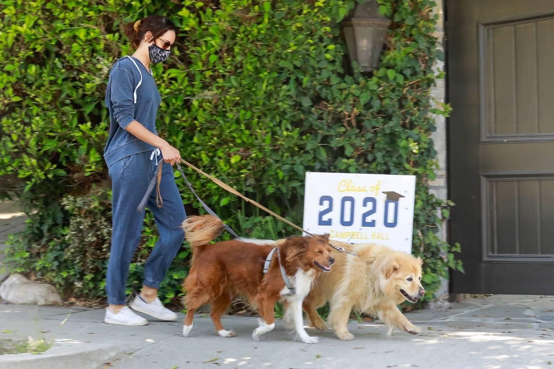 Aubrey Plaza 2020 : Aubrey Plaza – Walking her dogs in Los Feliz-14