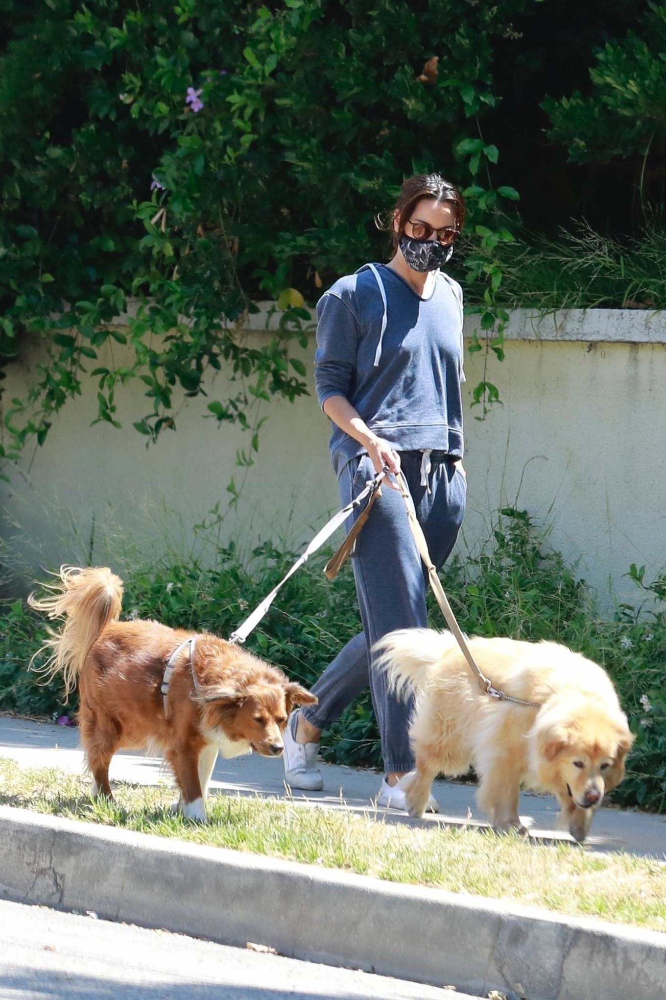 Aubrey Plaza 2020 : Aubrey Plaza – Walking her dogs in Los Feliz-15