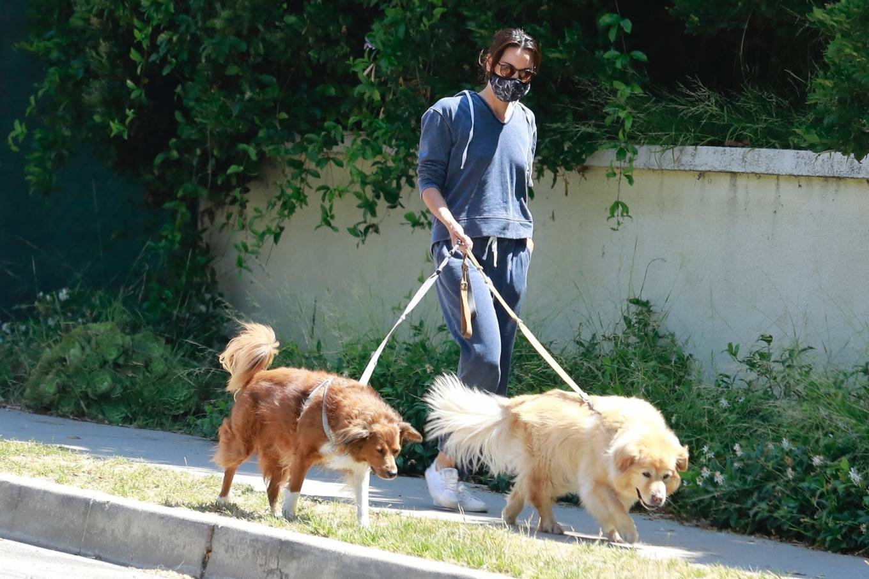 Aubrey Plaza 2020 : Aubrey Plaza – Walking her dogs in Los Feliz-16