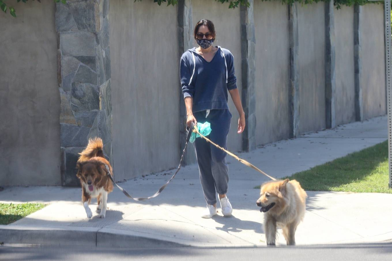 Aubrey Plaza 2020 : Aubrey Plaza – Walking her dogs in Los Feliz-18