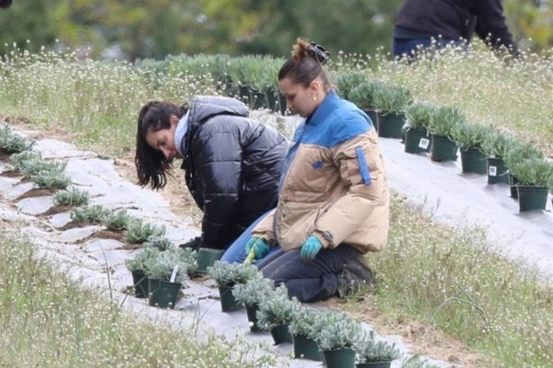 Bella Hadid - Planting herbs with her mom at a local family estate in New Hope
