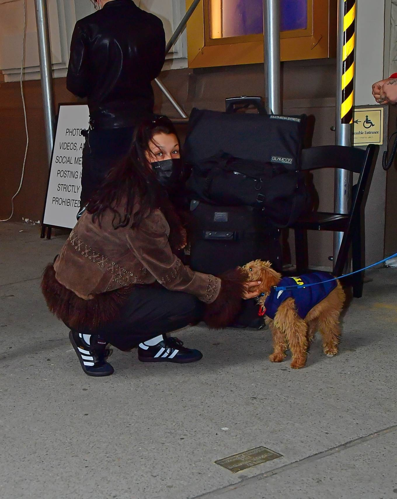 Bella Hadid - play with the pup in New York