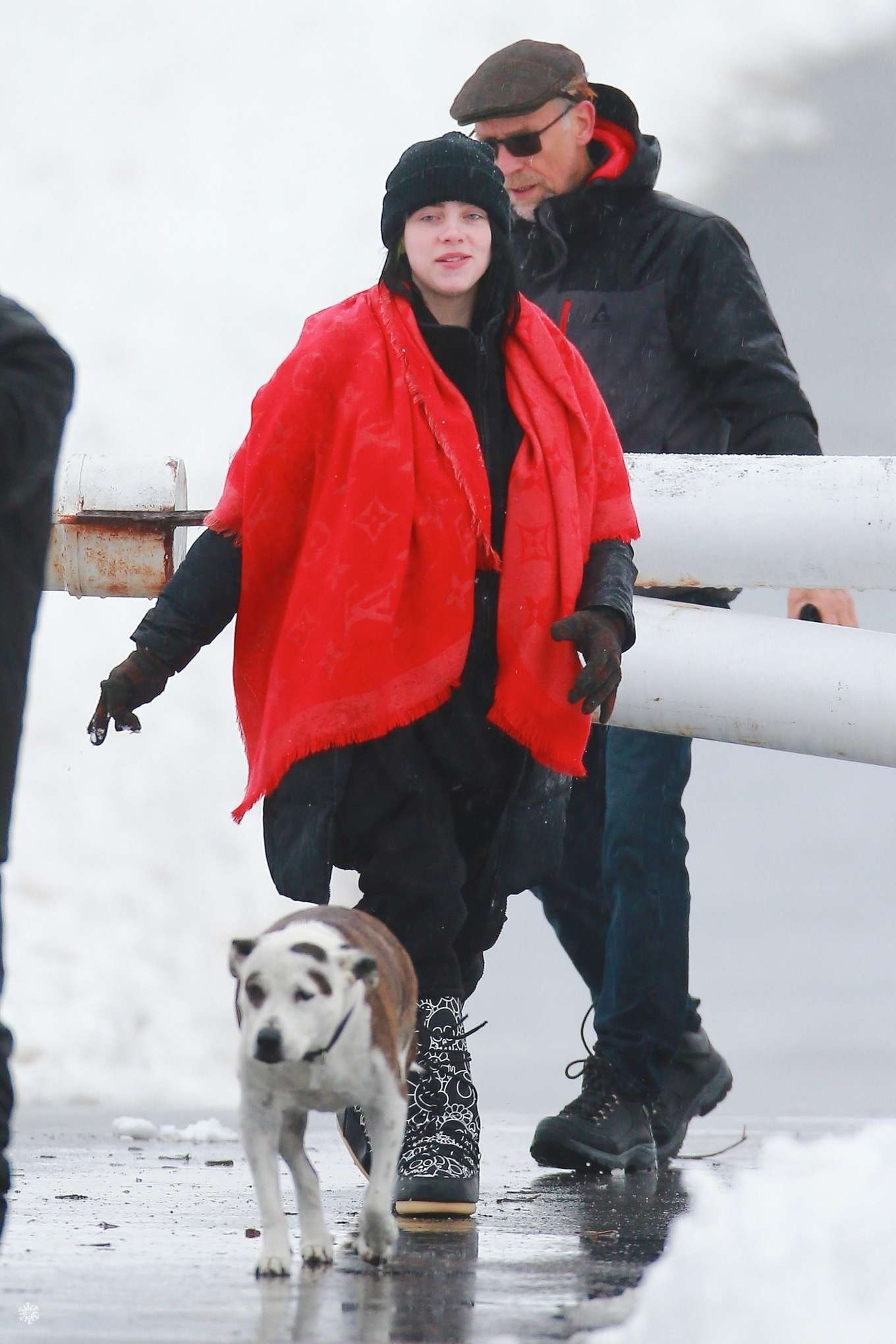 Billie Eilish - Goes for a walk in the snow at the Angeles National Forest in LA