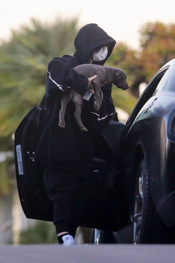 Billie Eilish - Out with her new puppy