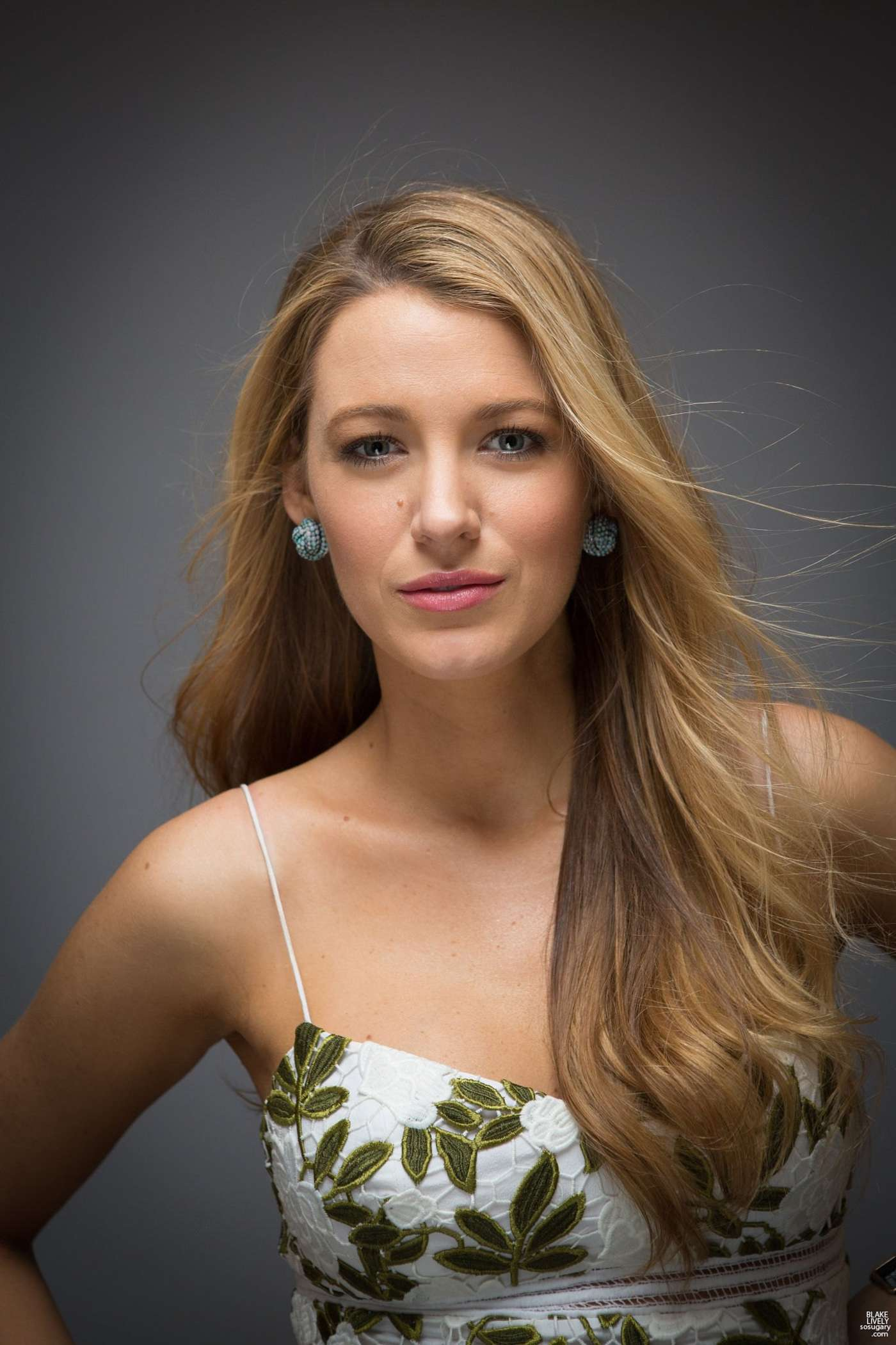 Blake Lively: The Holl...