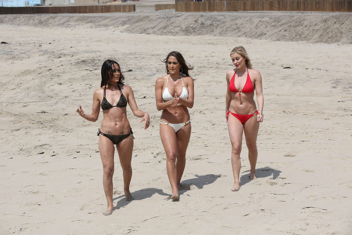Brie Bella, Nikki Bella, Paige, Lana and Renee Young: Total Divas ...