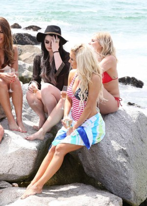 Brie bella nikki bella paige lana and renee young total as