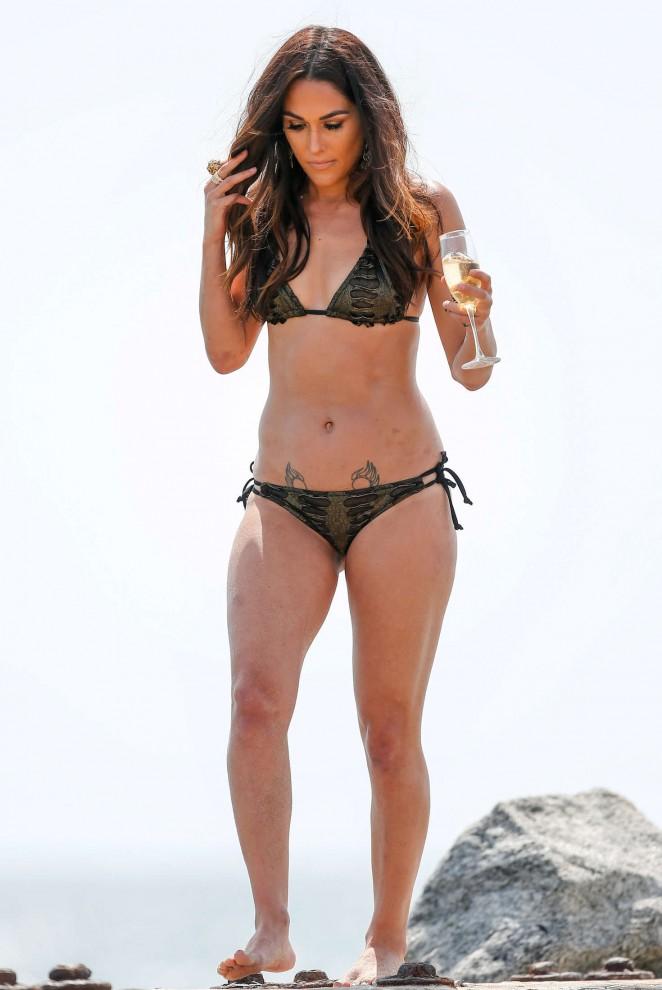 Bella, Nikki Bella, Paige, Lana and Renee Young – 'Total Divas ...