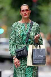 Brooke Shields in Green Dress - Out in New York City