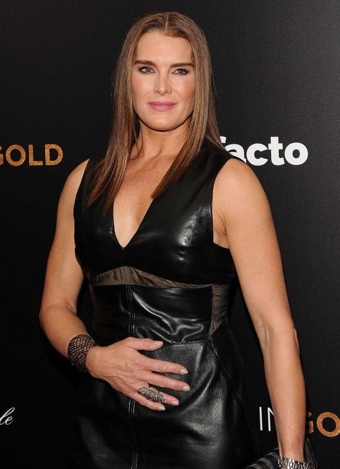 "Brooke Shields – ""Woman In Gold"" Prwemiere in New York"