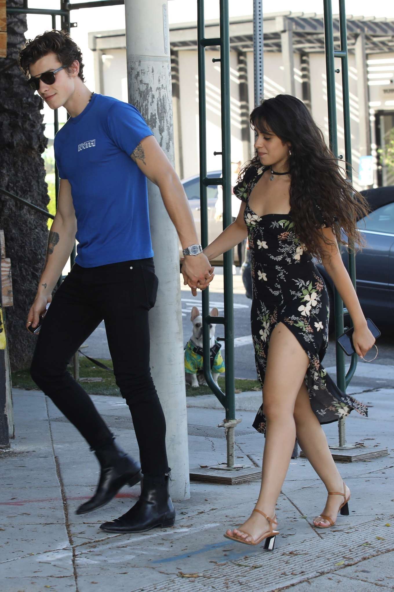 Camila Cabello and Shawn Mendes - Out getting coffee in West Hollywood