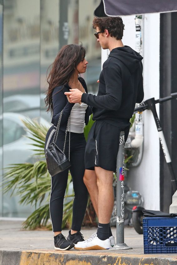 Camila Cabello and Shawn Mendes – Out in West Hollywood-04