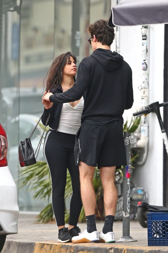 Camila Cabello and Shawn Mendes – Out in West Hollywood-05
