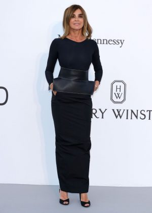 Carine Roitfeld - amfAR's 24th Cinema Against AIDS Gala in Cannes