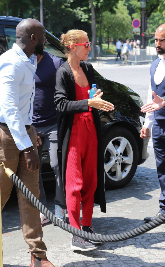 Celine Dion - Arrives in Paris