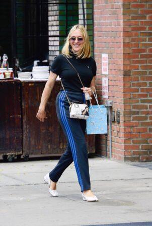 Chloë Sevigny - Out in New York