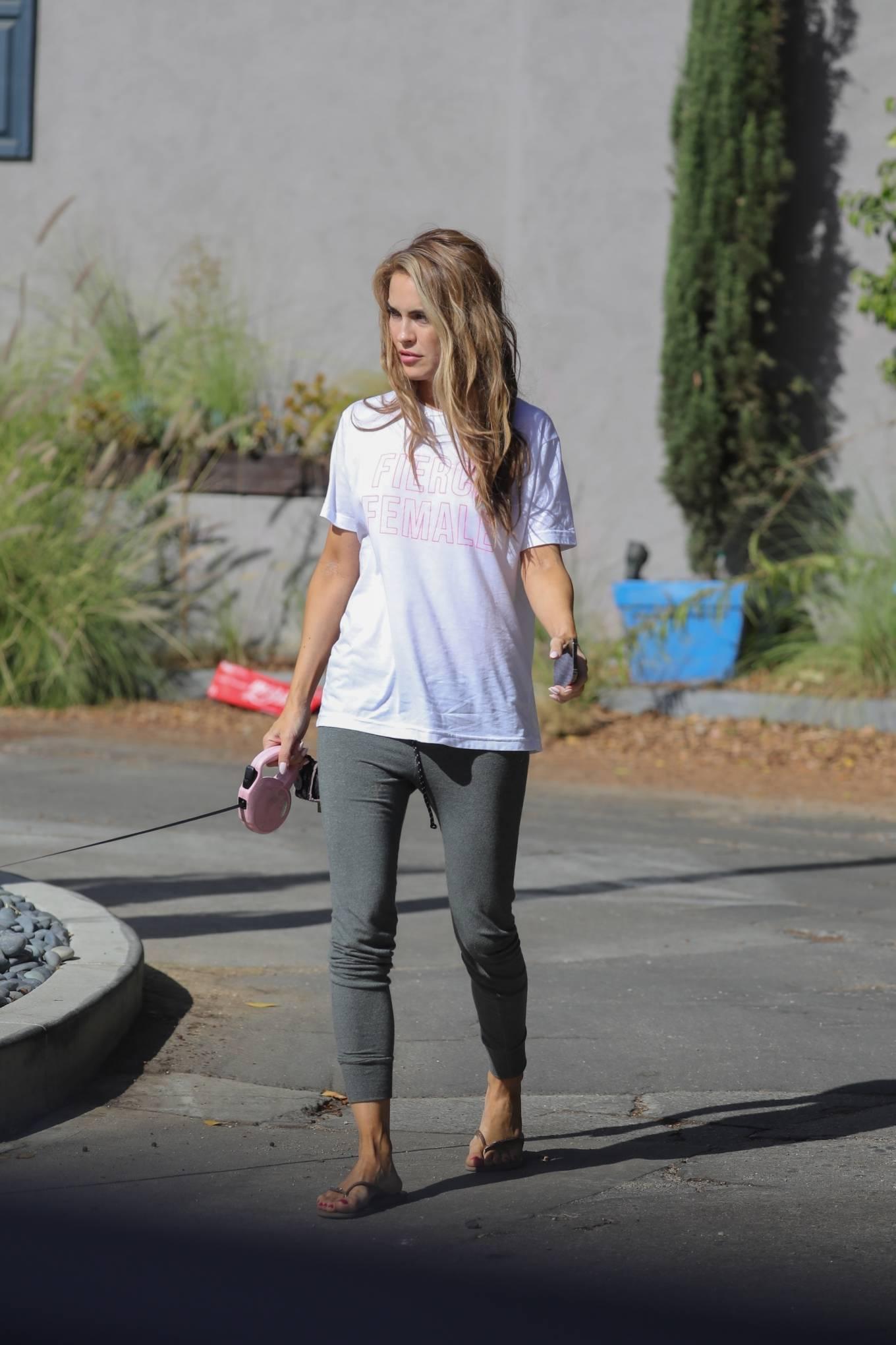 Chrishell Stause 2020 : Chrishell Stause – Seen walking her dog in Los Angeles-06