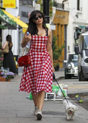 Daisy Lowe in Dress walking her dog in Primrose Hill