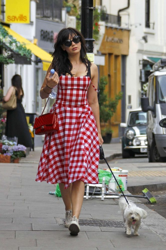Daisy Lowe in Dress walking her dog in Primrose Hill