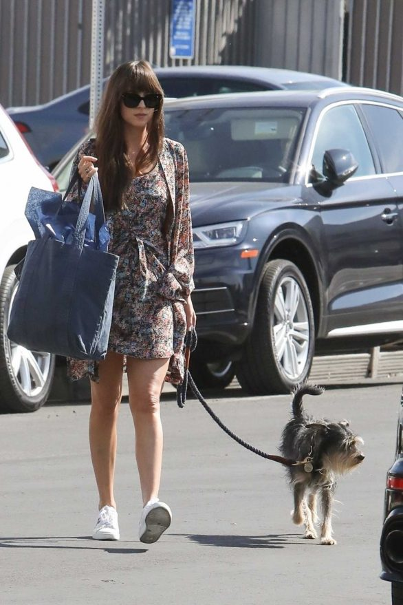 Dakota Johnson - Shopping with her dog in Los Angeles