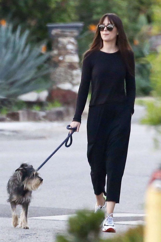 Dakota Johnson – Takes her dog for a walk in Malibu