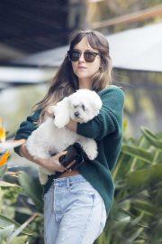 Dakota Johnson with her dog out in Malibu