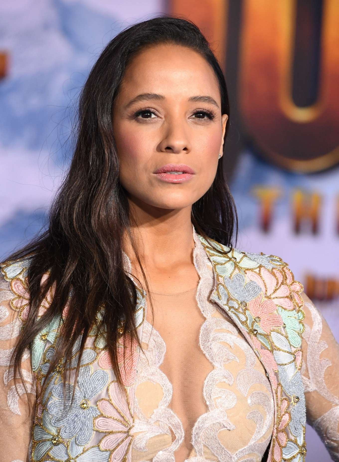 Dania Ramirez 2019 : Dania Ramirez – Jumanji: The Next Level premiere in Hollywood-23