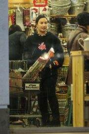 Demi Lovato - Shopping in Los Angeles